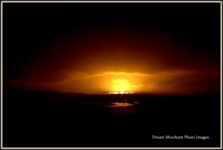 dawn best